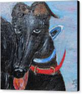 Black Beauty Canvas Print by Lucille  Valentino