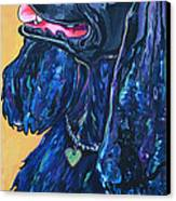 Black Cocker Spaniel Canvas Print by Patti Schermerhorn