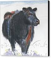 Black Cow Drawing Canvas Print by Mike Jory