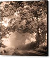 Black Dog On A Misty Road. Misty Roads Of Scotland Canvas Print
