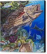 Black Grouper Hole Canvas Print by Carey Chen