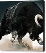 Black Thunder Canvas Print