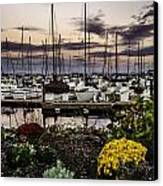 Blaine Harbor Canvas Print by Blanca Braun