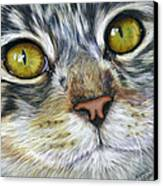 Stunning Cat Painting Canvas Print