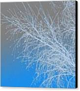 Blue Branches Canvas Print