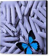 Blue Butterfly With Gary Hands Canvas Print by Garry Gay