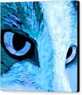 Blue Cat Face Canvas Print