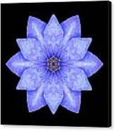 Blue Clematis Flower Mandala Canvas Print