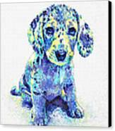 Blue Dapple Dachshund Puppy Canvas Print by Jane Schnetlage