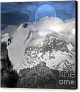 Blue Eyed And Moon Canvas Print