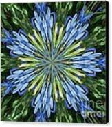 Blue Flower Star Canvas Print by Annette Allman