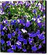 Blue Flowers On Sun Canvas Print