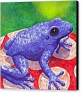 Blue Frog Canvas Print
