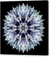Blue Globe Thistle Flower Mandala Canvas Print