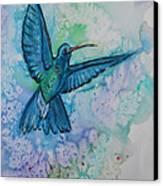 Blue Hummingbird In Flight Canvas Print by M C Sturman