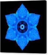 Blue Pansy II Flower Mandala Canvas Print by David J Bookbinder