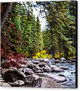 Blue River Canvas Print by Sergio Aguayo