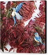Bluebirds Love Sumac Canvas Print by Helen Klebesadel