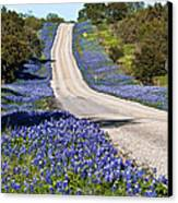 Bluebonnet Lined Hwy Canvas Print by Thomas Pettengill