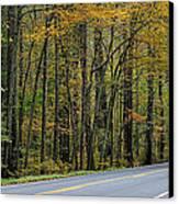 Blueridge Parkway Virginia Canvas Print