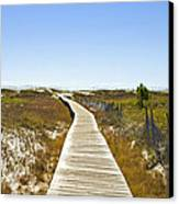 Boardwalk Canvas Print by Susan Leggett