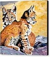 Bob Kittens Canvas Print by Phyllis Kaltenbach