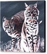 Bobcats In The Hood Canvas Print by DiDi Higginbotham