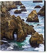Bodega Head Canvas Print by Garry Gay