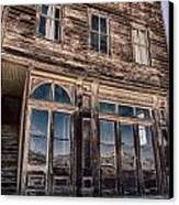 Bodie Canvas Print by Cat Connor