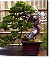 Bonsai Tree And Bamboo Fence Canvas Print by Elaine Plesser