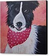 Border Collie Canvas Print by Leslie Manley