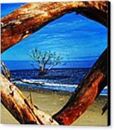 Charleston Sc Botany Bay Canvas Print