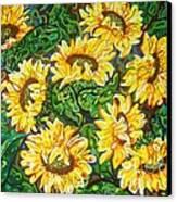 Bountiful Sunflowers Canvas Print by Deborah Glasgow