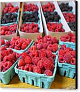Bounty Of Berries Canvas Print