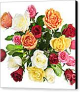 Bouquet Of Roses From Above Canvas Print