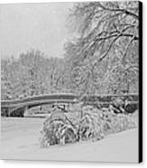 Bow Bridge In Central Park During Snowstorm Bw Canvas Print by Susan Candelario