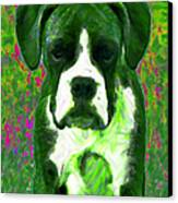 Boxer 20130126v3 Canvas Print by Wingsdomain Art and Photography