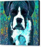 Boxer 20130126v4 Canvas Print by Wingsdomain Art and Photography