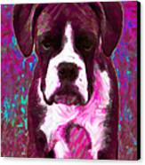 Boxer 20130126v7 Canvas Print by Wingsdomain Art and Photography