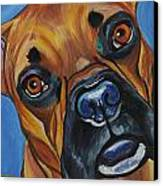 Boxer Canvas Print by Melissa Smith
