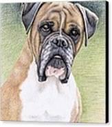 Boxer Portrait Canvas Print