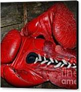 Boxing Gloves Canvas Print by Paul Ward