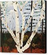 Brightest Birch Canvas Print