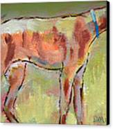 Brindle Greyhound Canvas Print by Carol Jo Smidt