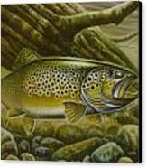 Brown Trout Log Canvas Print by Jon Q Wright