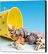 Bucket Of Seashells Still Life Canvas Print by Tom Mc Nemar