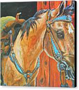 Buckskin Filly Canvas Print