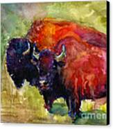 Buffalo Bisons Painting Canvas Print