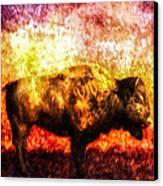 Buffalo Canvas Print by Bob Orsillo