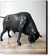 Bull Canvas Print by Nikola Litchkov